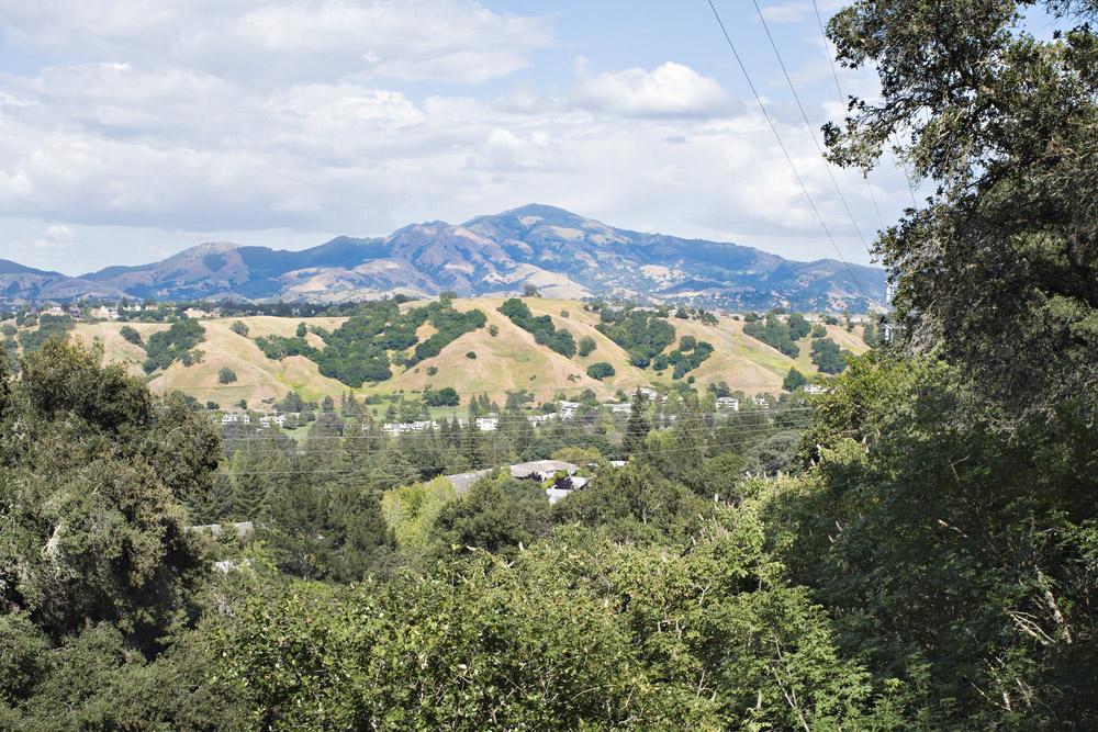 Walnut Creek California | Bohm Law Group